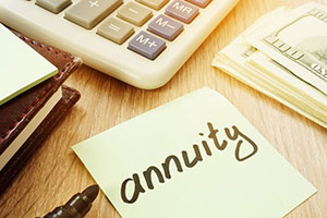 What investment options do annuities have